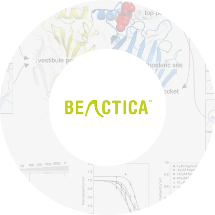 Case Studies Beactica